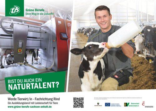 Tierwirt/in Rinderhaltung